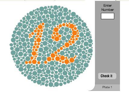 こんなカンジのテスト。右上に見えた数字をいれるだけです。