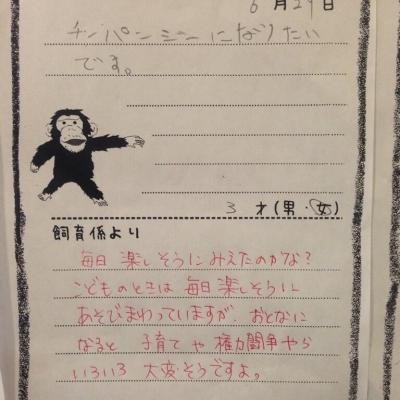チンパンジーになりたいです