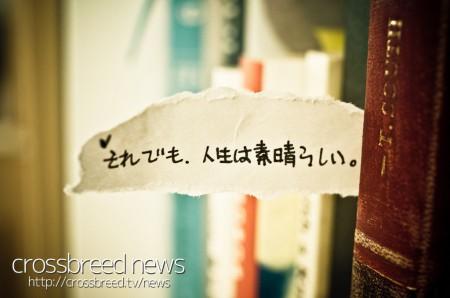 news_logo001